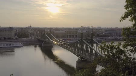 budapeste : Liberty bridge at sunrise