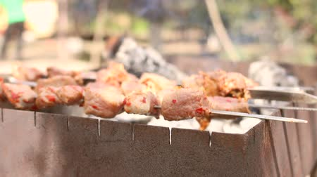 engorda : Barbecue With Delicious Grilled Meat and potatoes On Grill. Barbecue kebab Party. Charcoal grill.