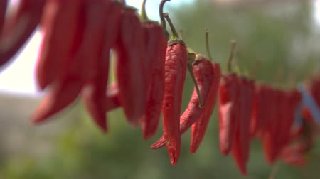 перец чили : Red dried chili pepper hang on wire to be dried. Close up shot.