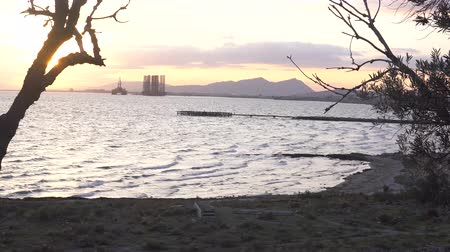 baku : Amazing sea view with trees silhouette making frame border. Seashore with mountain and oil derrick. 4k video. Stock Footage