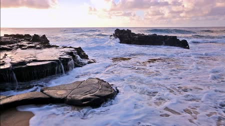 Оаху : waves breaking on rocks after sunrise close to Sandy beach, Oahu, Hawaii Стоковые видеозаписи