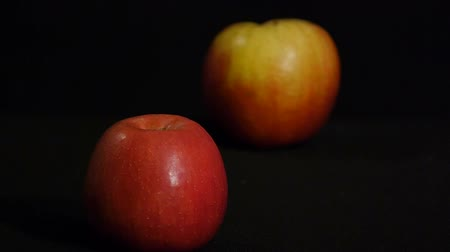 Still life of two red apples isolated on a black background. Close up. Refocusing.