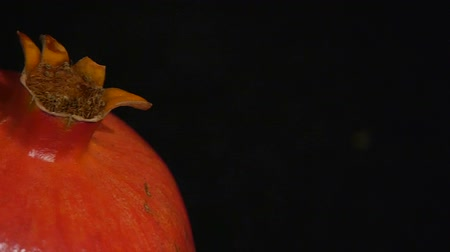 abriu : Pomegranate fruit isolated on a black background. Close-up. Slide slowly.