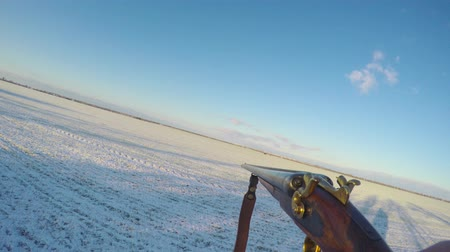 Hunter carries a gun in front of him in the winter field
