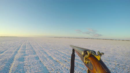 Hunter carries a gun in front of him in the winter field. on the horizon other hunters and hunting dogs go. Hunters are looking for prey. first-person view.