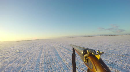 on the horizon other hunters and hunting dogs go. Hunters are looking for prey. first-person view. Stock Footage