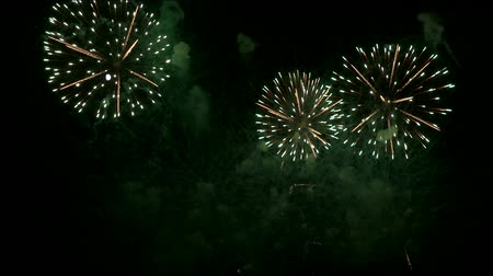 firecracker : big fireworks explode next to the moon in the night sky Stock Footage