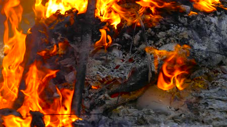 bionomics : On metal burns plastic in the ashes of a fire Stock Footage