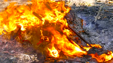 bionomics : Garbage wastes are covered with flame in the environment of the ashes of the fire