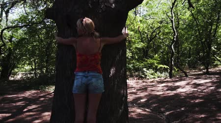 forest preservation : Hugging a tree. A woman puts her arms around a tree.