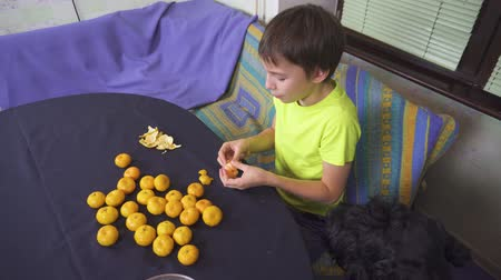Boy helping his mother to prepare tangerines for cake at home kitchen