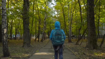 teen age : Schoolboy boy, with a knapsack behind his back going on the path among trees Stock Footage