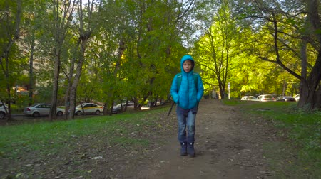 go away : Schoolboy boy, with a knapsack behind his back going on the path among trees Stock Footage