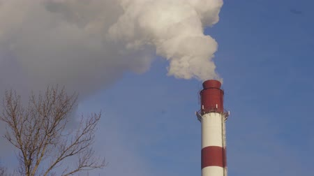 spaliny : Smoking chimneys of plant. Air pollution and ecological problems concept. Wideo