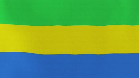 ga : [loopable] Flag of Gabon.  Gabonese official flag gently waving in the wind. Highly detailed fabric texture for 4K resolution. 15 seconds loop.  Source: CGI rendering. Stock Footage