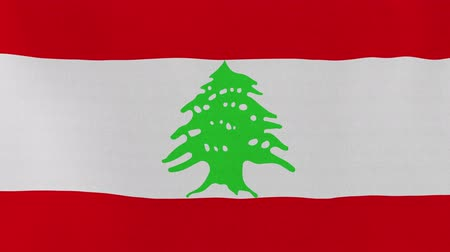 libra : [loopable] Flag of Lebanon.  Lebanese official flag gently waving in the wind. Highly detailed fabric texture for 4K resolution. 15 seconds loop.  Source: CGI rendering.