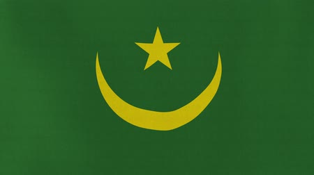 senhor : [loopable] Flag of Mauritania.  Mauritanian official flag gently waving in the wind. Highly detailed fabric texture for 4K resolution. 15 seconds loop.  Source: CGI rendering.