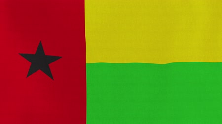 guiné : [loopable] Flag of Guinea-Bissau.  Guinea-Bissau official flag gently waving in the wind. Highly detailed fabric texture for 4K resolution. 15 seconds loop.  Source: CGI rendering.