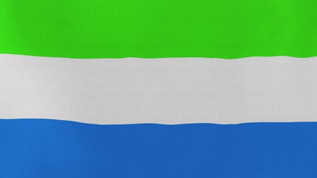 sierra leone flag : [loopable] Flag of Sierra Leone.  Sierra Leonean official flag gently waving in the wind. Highly detailed fabric texture for 4K resolution. 15 seconds loop.  Source: CGI rendering. Stock Footage