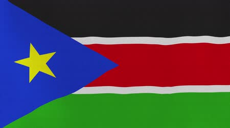 ss : [loopable] Flag of South Sudan.  South Sudanese official flag gently waving in the wind. Highly detailed fabric texture for 4K resolution. 15 seconds loop.  Source: CGI rendering.