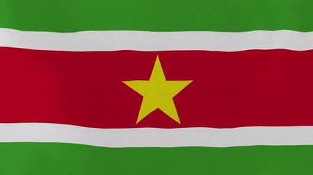paramaribo : [loopable] Flag of Suriname.  Surinamese official flag gently waving in the wind. Highly detailed fabric texture for 4K resolution. 15 seconds loop.  Source: CGI rendering.