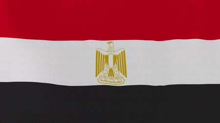 pé : [loopable] Flag of Egypt.  Egyptian official flag gently waving in the wind. Highly detailed fabric texture for 4K resolution. 15 seconds loop.  Source: CGI rendering. Vídeos
