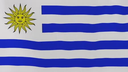 montevideo : [loopable] Flag of Uruguay.  Uruguayan official flag gently waving in the wind. Highly detailed fabric texture for 4K resolution. 15 seconds loop.  Source: CGI rendering.
