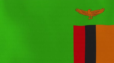 republic of zambia : [loopable] Flag of Zambia.  Zambian official flag gently waving in the wind. Highly detailed fabric texture for 4K resolution. 15 seconds loop.  Source: CGI rendering.