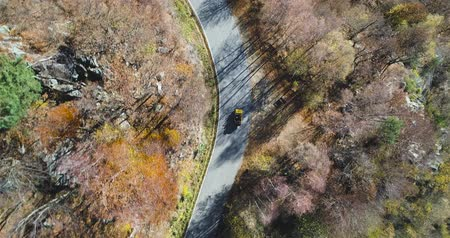 havai : Overhead aerial top view over yellow vintage car travelling on road in colorful autumn forest.Fall orange,green tree woods.Mountains street establisher.4k drone flight straight-down establishing shot