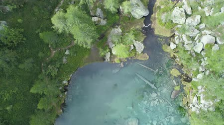 scape : aerial overhead above blue clear alpine lake near forest in sunny summer with clouds.Europe Alps green nature outdoors mountains straight down establisher.4k drone over top view establishing shot