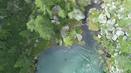 aerial overhead above blue clear alpine lake near forest in sunny summer with clouds.Europe Alps green nature outdoors mountains straight down establisher.4k drone over top view establishing shot