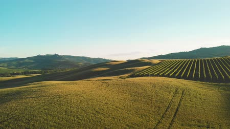 farmhouse : Video with a beautiful morning view of the green spring fields and hills in Tuscany near Pienza
