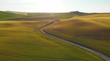 şarap : Aerial footage, green hills and gorgeous vineyards on sunset in Tuscany, Italy. Landscape by drone. Stok Video