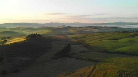 Aerial footage, green hills and gorgeous vineyards on sunset in Tuscany, Italy. Landscape by drone. Vidéos Libres De Droits