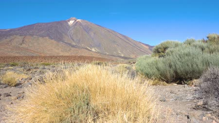 el teide : The Teide volcano (Pico del Teide) in highland of Tenerife island, The Canaries