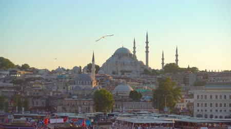 boynuzları : Fatih - Old Town of Istanbul at sundown, Turkey Stok Video