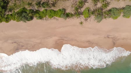 seylan : Deserted Indian Ocean Beach Sri Lanka Aerial Shot