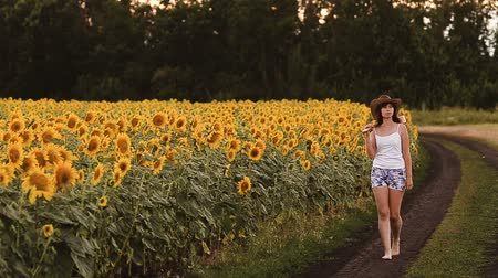 plucked : Girl with a guitar in sunflowers.
