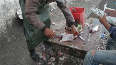 construir : Two men cleaning and descaling fresh caught fish, one is cleaning a filet and hosing off table, other is scraping scales fish with filet knife outdoors in the Essaouira, Morocco Stock Footage