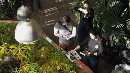 guache : Moscow, Russia, April 17, 2019: Young people artists paint plants with watercolors in the botanical garden talking on different topics gesticulating. Photographer takes a drawing process Stock Footage