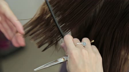 borbély : Hairdresser trimming brown hair with scissors, HD