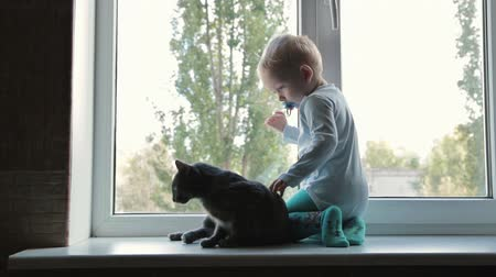 evcil hayvanlar : Little boy with black cat sitting near window at home, HD