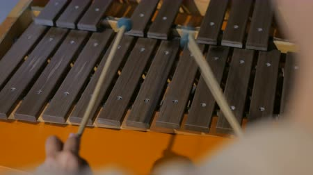 enstrümanlar : Close-up shot of musician playing xylophone. Art and entertaiment concept