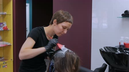 kartáč na vlasy : Professional hairdresser, stylist coloring hair of woman client at salon, studio. Beauty and fashion concept