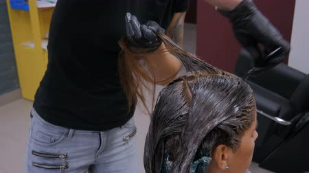 vonalvezetés : Professional hairdresser, stylist coloring hair of woman client at salon, studio. Beauty and fashion concept