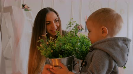 Young mother and her baby son looking at houseplant at home. Family, childhood and leisure concept
