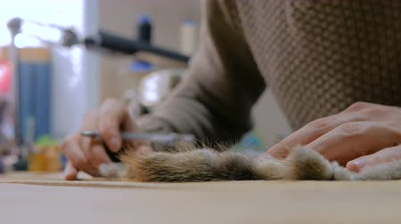 forro : Professional male skinner, furrier working with mink fur skin at atelier, workshop. Fashion and leatherwork concept Stock Footage