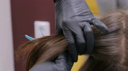 Professional hairdresser, stylist doing hairstyle of female client at salon, studio. Beauty and haircare concept Wideo