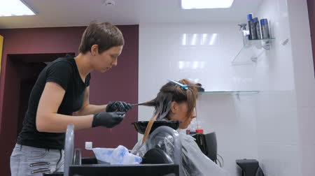 léčba : Professional hairdresser, stylist coloring hair of woman client at salon, studio. Beauty and fashion concept