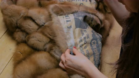forro : Professional tailor, designer repairing fur coat at atelier, studio. Fashion and tailoring concept Stock Footage